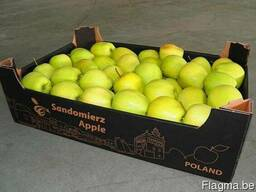 Package and packing of apple - boxes, corrugated boxes, corr - photo 3