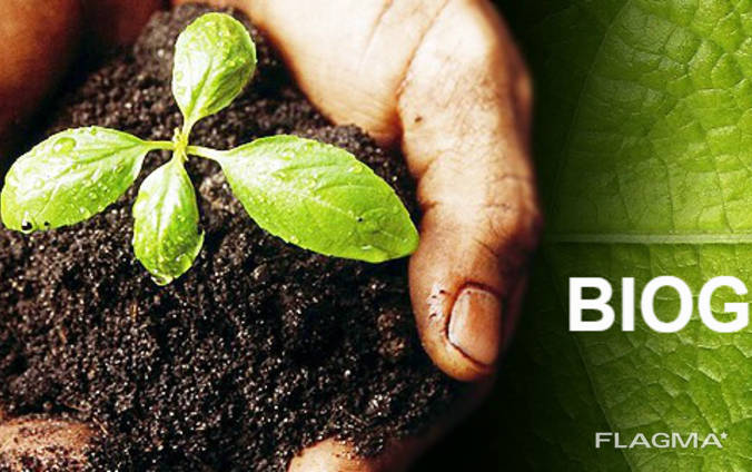 Biohumus / Vermicompost / Natural fertilizer