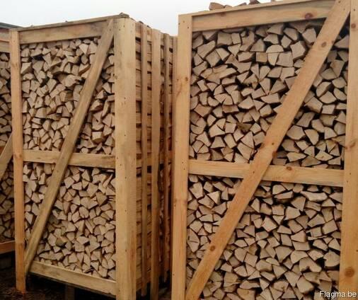 Brennholzscheite (Eiche, Hagebuche, Birke, Erle, Esche)