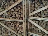 Дрова лиственных пород дуб, граб, береза, техническая сушка - photo 1
