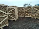 Дрова лиственных пород дуб, граб, береза, техническая сушка - photo 2