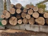 Unedged oak lumber - photo 2
