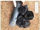 Wood charcoal /charbon de bois - фото 3